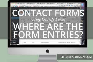 Contact Forms: Where are the form entries?